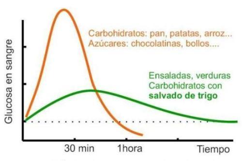 Que carbohidratos son los m s adecuados en cada momento - Alimentos bajos en glucosa ...